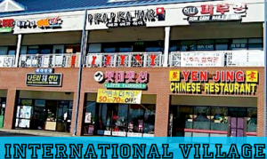 The International Village